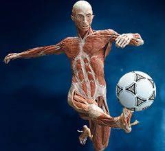 fisioterapia desportiva em clinica de fisioterapia